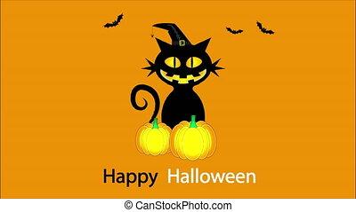 chat, nuit sorcières citrouille