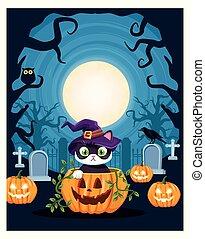 chat, scène, cimetière, halloween, citrouille, sombre