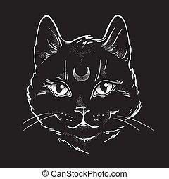 chat, sien, noir, lune, forehead.