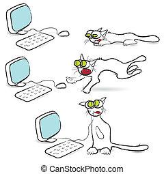 chat, souris