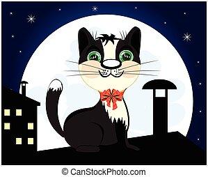 chat, toit, nuit