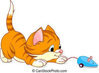 chaton, espiègle