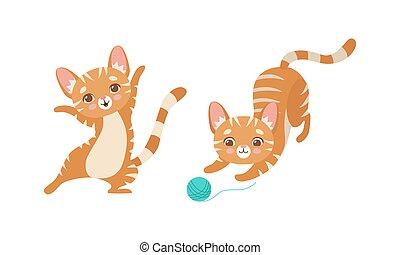 chaton, fil, à poil, jouer, ensemble, chouchou, mignon, rayé, gingembre, vecteur, conjugal, balle