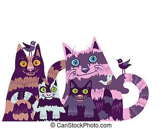 chats, étrange