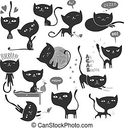 chats, beaucoup