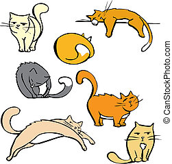 chats, plusieurs