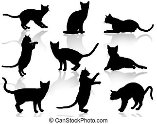 chats, silhouette