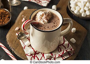 chaud, fait maison, menthe poivrée, chocolat