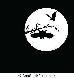 chauve-souris, vecteur, silhouettes, lune
