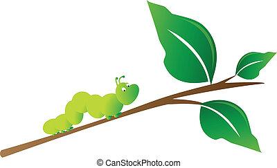 chenille, branche arbre
