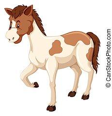 cheval brun, fourrure, blanc