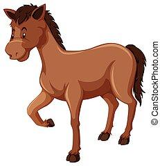 cheval brun, fourrure