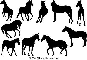 cheval, vecteur, silhouette, illustration