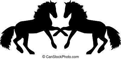 chevaux, élevage, deux