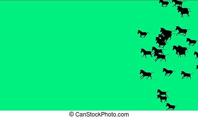 chevaux, groupe, silhouette, course