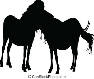 chevaux, silhouette, deux