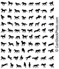 chevaux, silhouettes