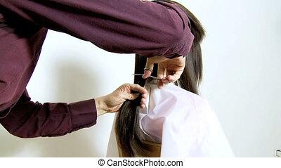 cheveux découpage, coiffeur, très, long