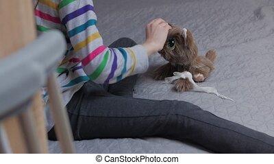chien, béquilles, pansements, girl, jouet