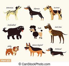 chien, espèces