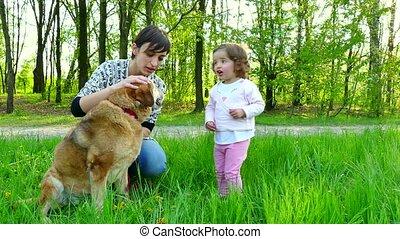 chien famille, maman, mère, portrait, girl
