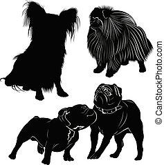 chien, fond, isolé, ensemble, blanc, silhouettes