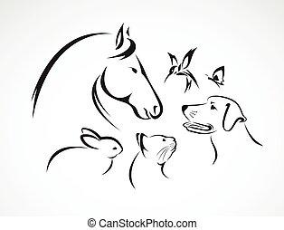 chien, groupe, fond, chat, -, oiseau, isolé, vecteur, lapin, cheval blanc, papillon, animaux familiers