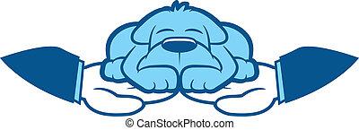 chien, illustration, soin