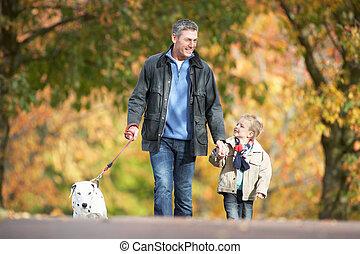 chien marche, parc, jeune, fils, automne, par, homme