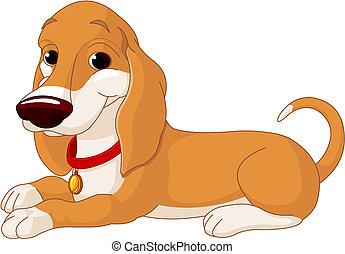 chien, mignon, mensonge