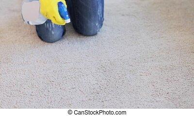 chiffon, femme, tapis, gants, nettoyage, ou, moquette
