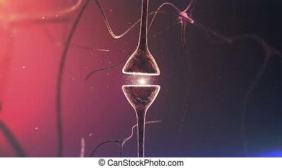 chimique, cerveaux, neurons., synapse., closeup.