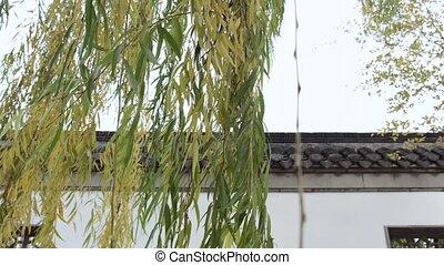 chinois, jardin, entrée