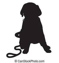 chiot, silhouette, labrador