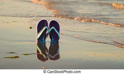 chiquenaude, plage, réflecteur, bleu, opérations virgule flottante