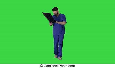 chirurgien, vert, mri, marchant, écran, étudier, key., balayage cerveau, chroma