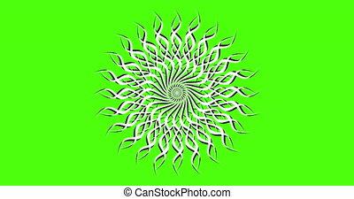 chromakey., élément, arrière-plan., animation, vert, white., fond, vidéo, noir