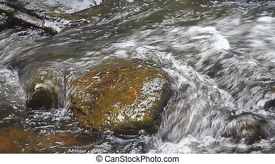 chute eau, forêt, profond, nature