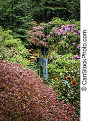 chute eau, jardin
