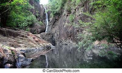 chute eau, jungle