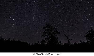 ciel, étoiles, nuit