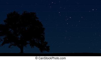 ciel, 04, nuit