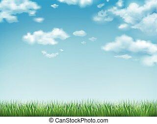 ciel bleu, herbe, champ vert