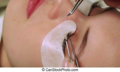 cil, ombre, haut, eyelashes., sélectif, extension, foyer., procedure., femme, bleu, effect., long, fin, oeil