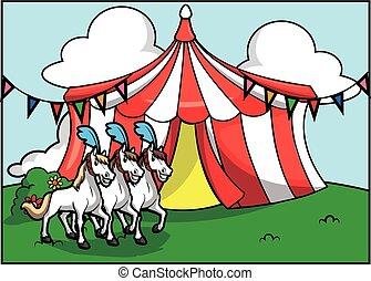 cirque, attraction, cheval, blanc