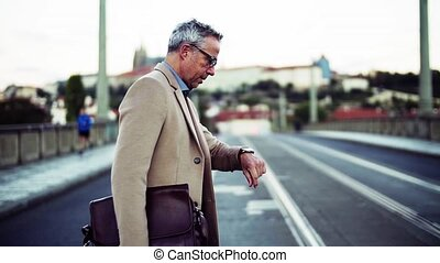 city., prague, sac, mûrir, croisement, homme affaires, route