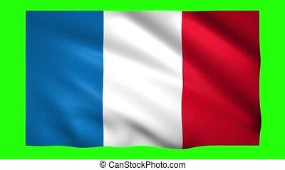 clã©, vert, france, chroma, écran, drapeau