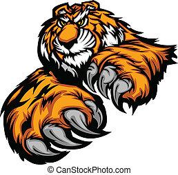 cla, corps, tigre, mascotte, pattes