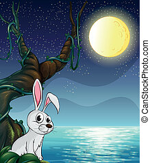 clair, entiers, lapin, lune