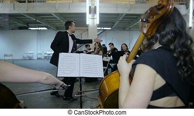 classique, musicien, salle, symphonie, musique, jouer
